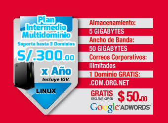 Plan Intermedio  S/. 300 soles anuales